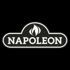 BEISPIEL_napoleon-logo550